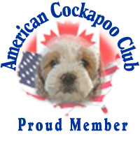 American Cockapoo Club Logo