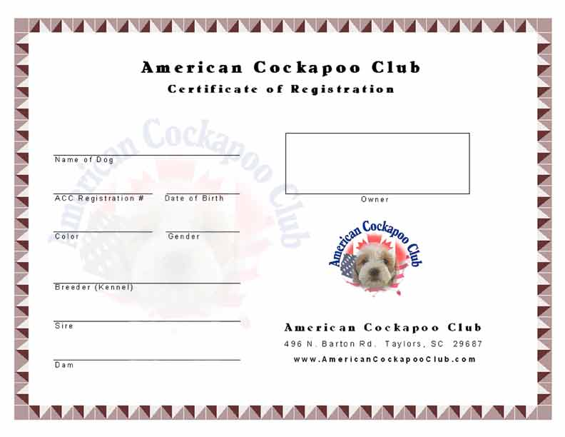 register certificate cockapoos